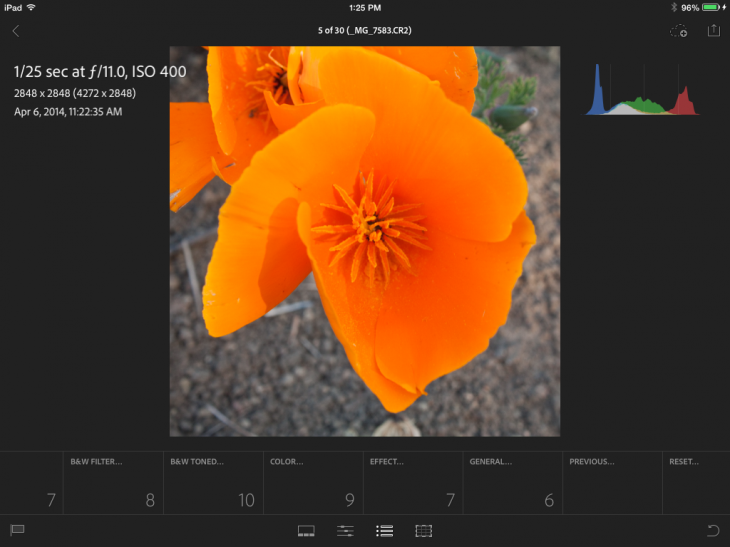 photo61 730x547 Adobe Lightroom Mobile for iPad highlights integrated collaboration between the desktop and tablet