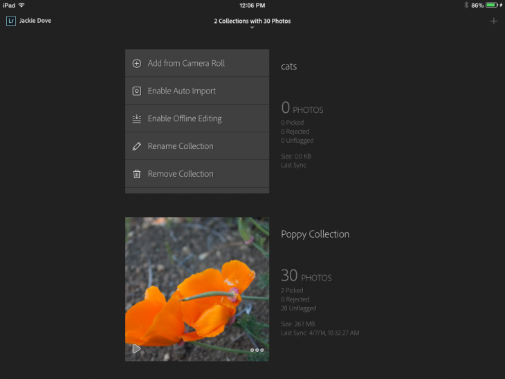 photo7 730x547 Adobe Lightroom Mobile for iPad highlights integrated collaboration between the desktop and tablet