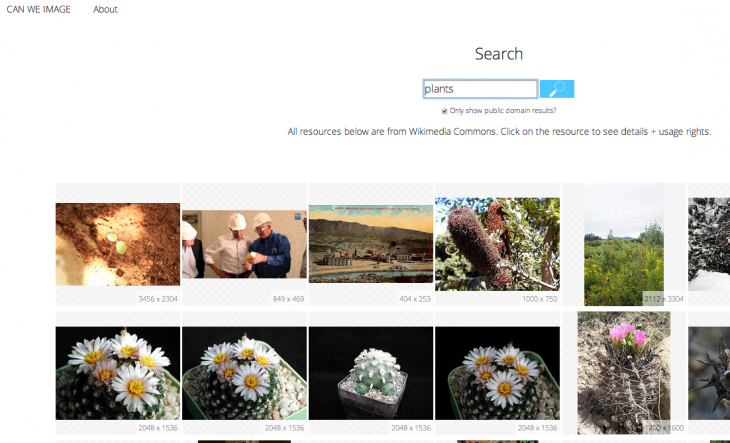Screen Shot 2014 05 13 at 11.08.41 PM 730x443 The best free stock image resources on the Web