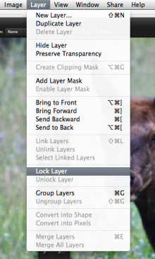Screen Shot 2014 05 22 at 9.01.22 AM 220x367 Pixelmator upgrade touts new repair tool and lock layers features