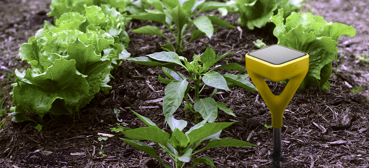Edyn's Soil Sensor and Hose Attachment Make Your Garden Smart