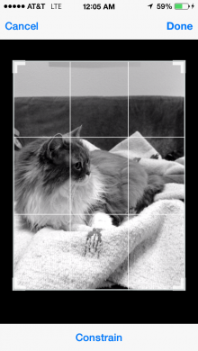 photo2 220x390 Lenka is a beautifully simple iPhone app that gives photos that moody monochrome magic