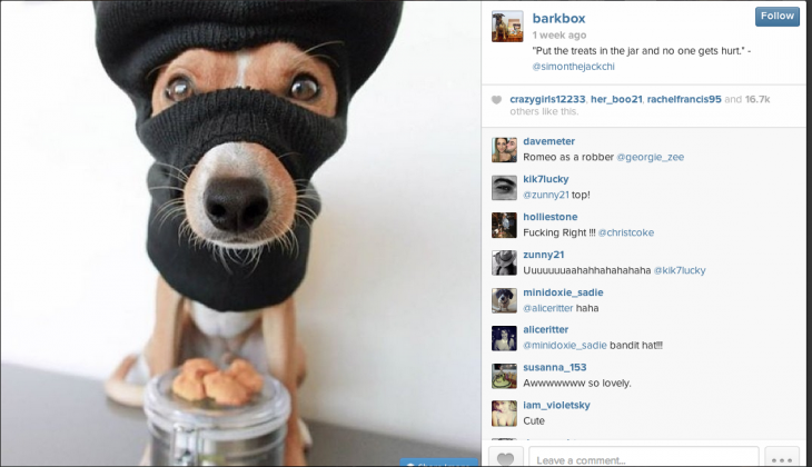 Barkbox Screenshot 730x420 In social media marketing, who owns your brands voice?