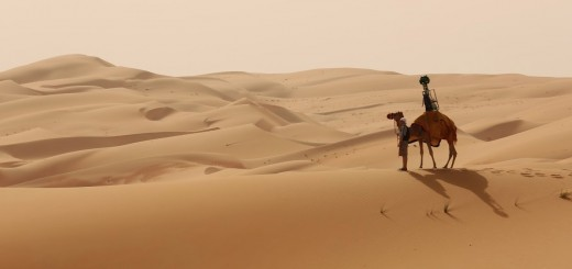 Google took a camel across the Liwa Desert to capture new Street View photos