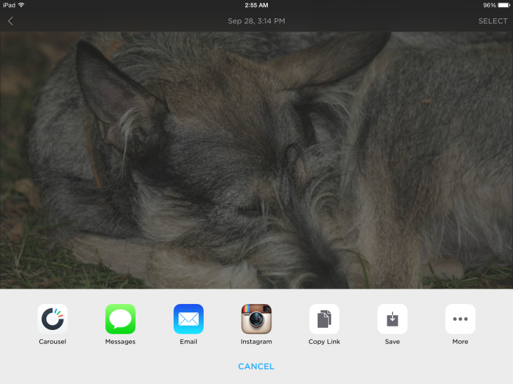 2014 11 20 02.55.59 730x547 Dropbox launches iPad and Web versions of its Carousel photo gallery app