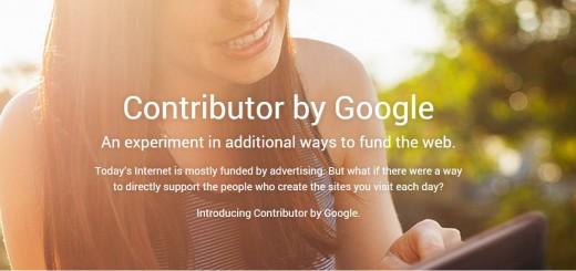 Contributor Google