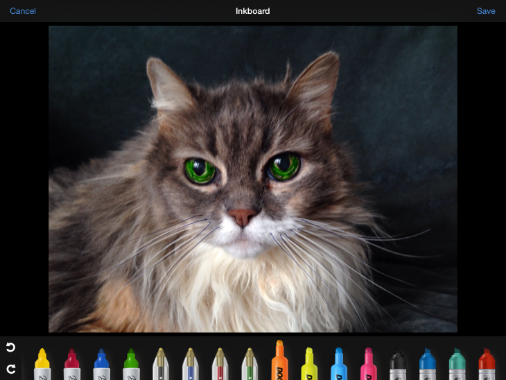 IMG 0056 730x548 Inkboard upgrade lets you scribble all over your photos