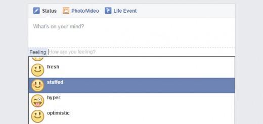 Facebook fat