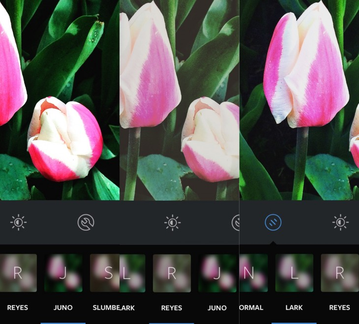 IMG 8023 730x659 Instagram adds emoji support to hashtags and 3 new filters