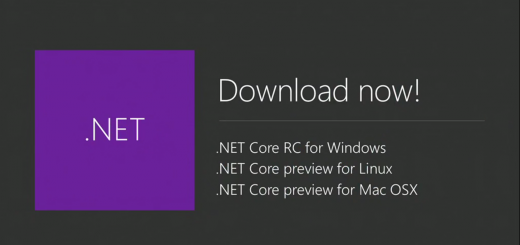 ms .net preview