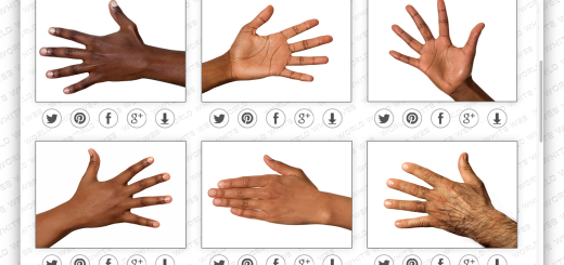 World White Web project wants to make Google's search results more diverse