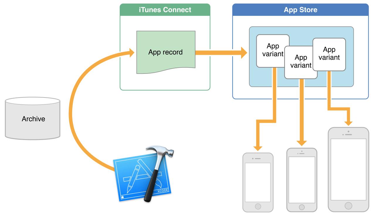 app_thinning_2x