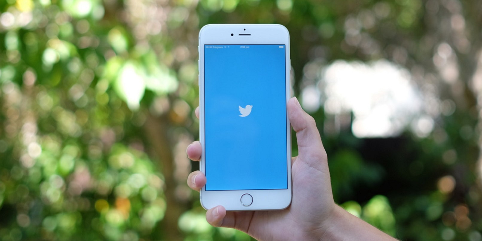 Twitter now lets marketers access every public tweet ever made