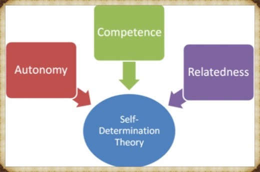 SelfDeterminationTheory_Fotor