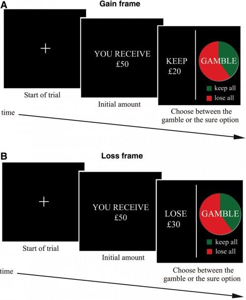 loss-aversion-study