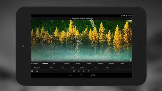 Lightroom Mobile offers a bevy of photo adjustment tools and lets you copy edits over to multiple photos
