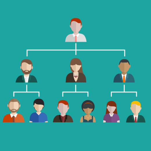 hierarchy, management, business