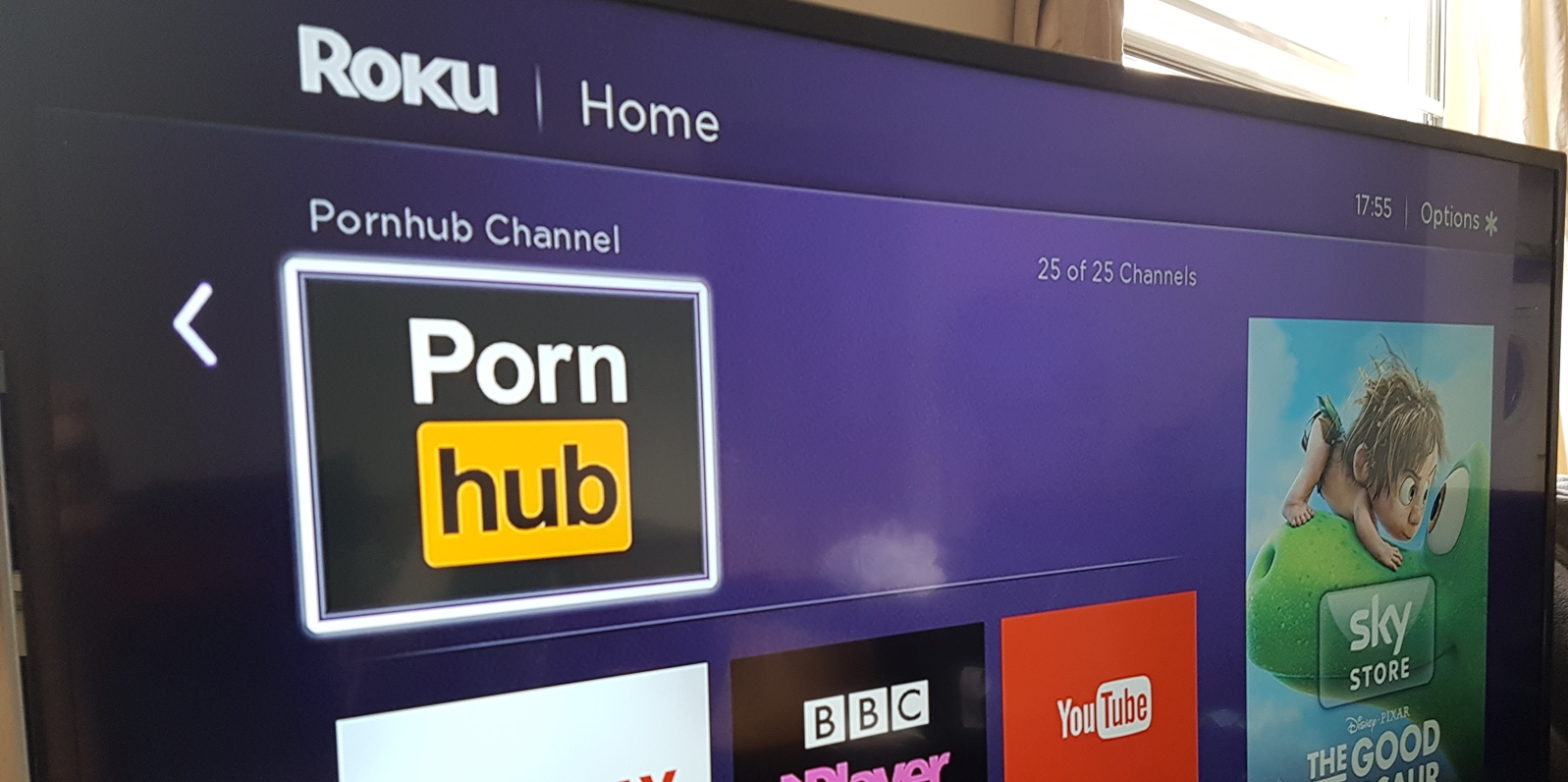 porn hub website