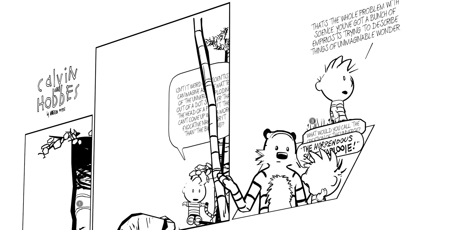 calvin and hobbes essays