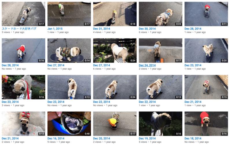誰も見ない動画を1年半で1000本以上アップした日本の大物Youtuber、海外ニュースサイトで晒され一躍スターに [無断転載禁止]©2ch.net [382958299]YouTube動画>17本 ->画像>19枚