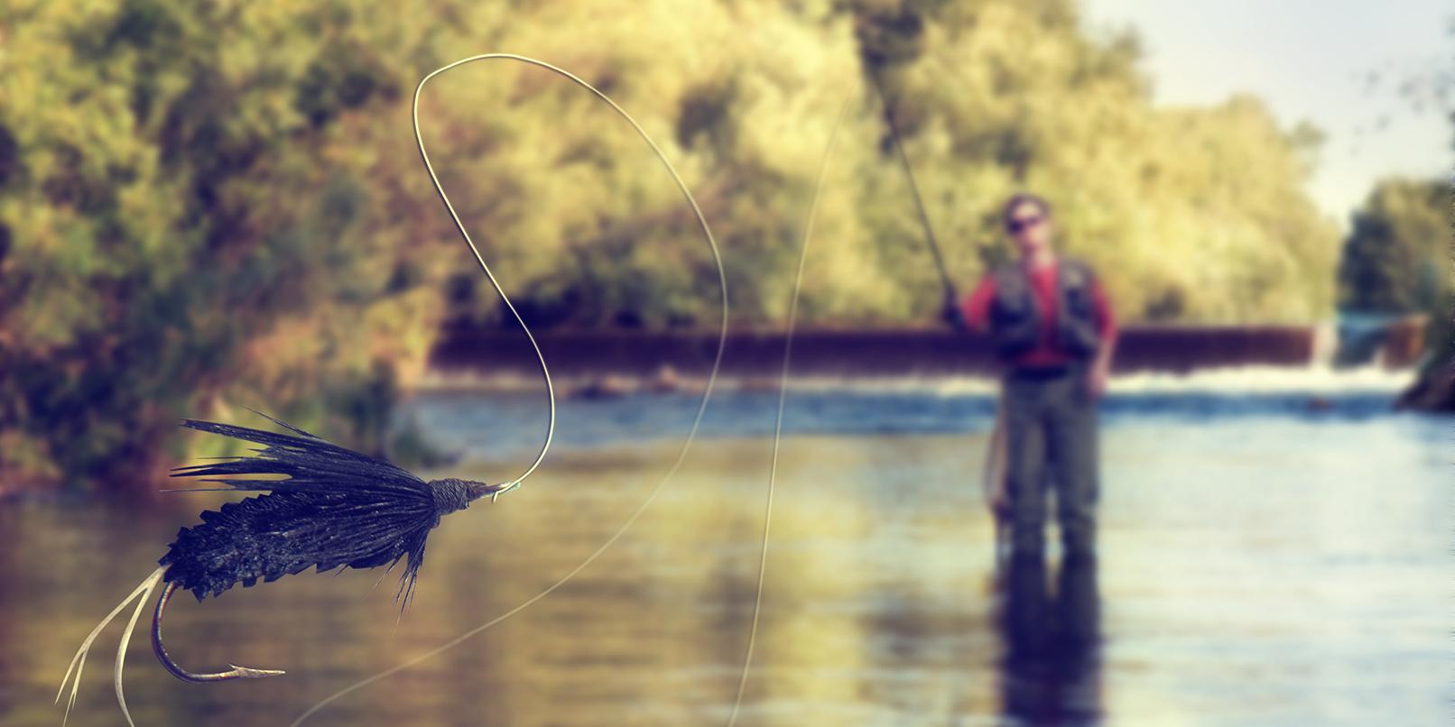 Phishing-fishing
